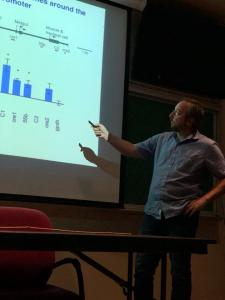 RISE Research Seminar, Alfredo Ghezzi, Ph.D. 2